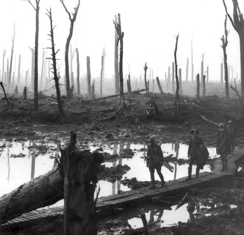 1. Weltkrieg: Chateau-Wald anno 1917