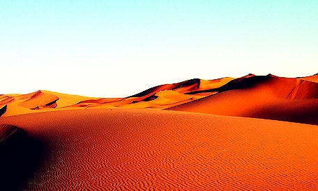 Gedankenschimmer: Der Eisbär in der Wüste